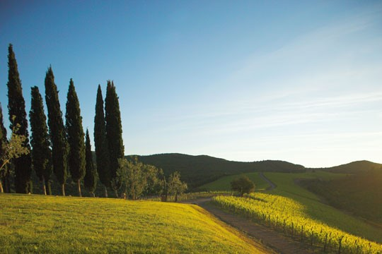 Castiglion del Bosco - August Offer